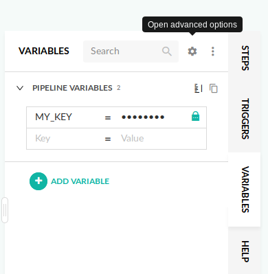 Pipeline environment variables